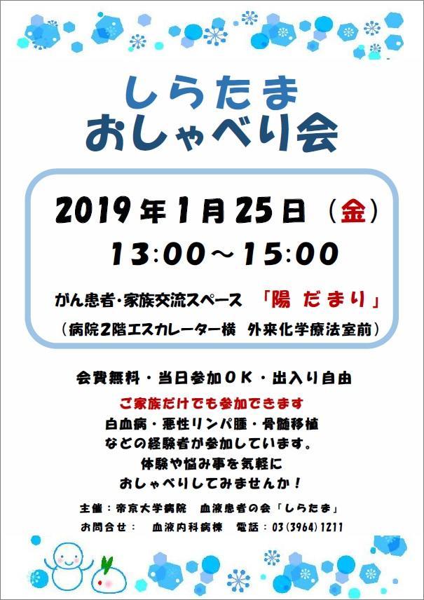 20190125-shiratama.jpg