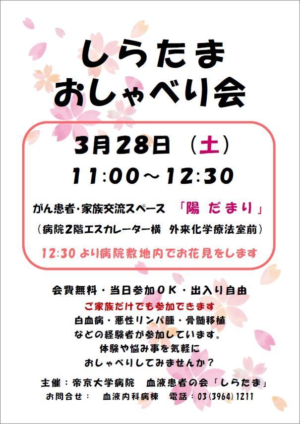 20200328_shiratama.jpg